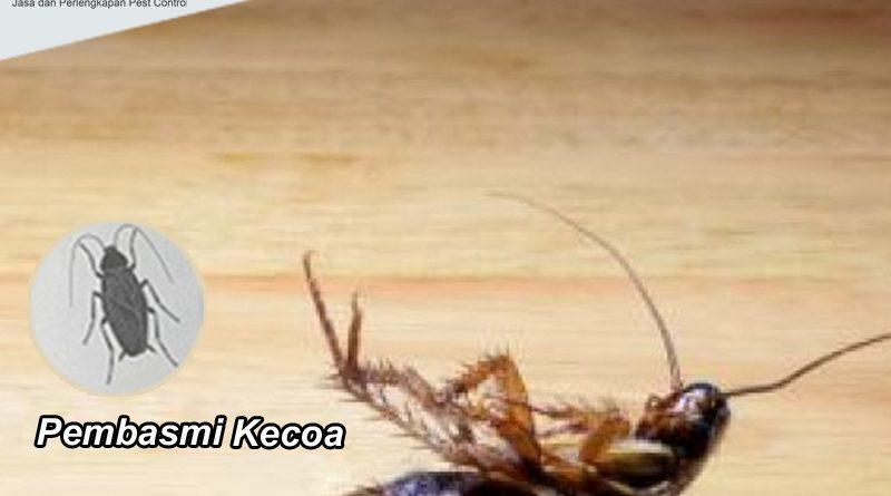 Pembasmi Kecoa